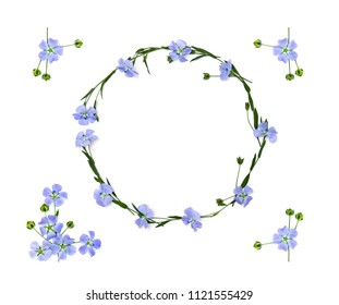 Wreath of blue flowers flax and capsules with seed flax ( Linum usitatissimum, linseed ) on a white background with space for text. Top view, flat lay