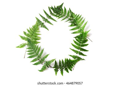 wreath with fern leaves isolated on white background