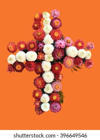 Wreath of Flowers on Orange Background