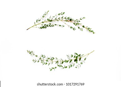Wreath frame made of branches eucalyptus isolated on white background. lay flat, top view