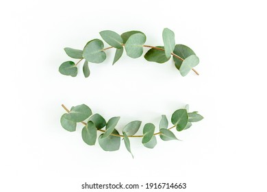 Wreath frame made of branches eucalyptus and leaves isolated on white background. Flat lay, top view
