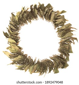 Wreath Of Laurel Leaves Isolated On White Background, Overhead View. Round Garland From Laurel Leaves White Isolated, Close Up View.
