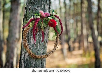 Wreath from a rod with autumn flowers hanging on a tree in the wood. Paints of fall in the coniferous wood.