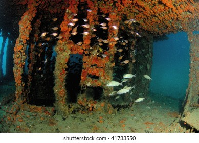 wreck dive south Florida