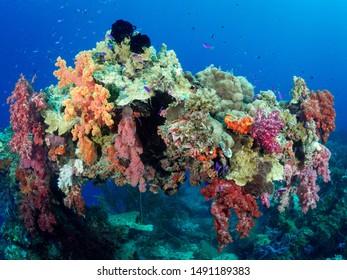 Wreck Diving Truk Lagoon, Weno Chuuk State