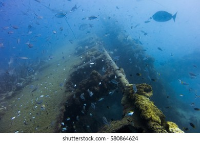 The wreck of the SS Yongala off Ayr, Queensland, Australia.