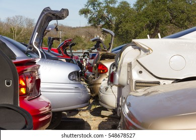 wrecked cars with several trunk lids standing at attention