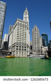 The Wrigley Building and Tribune Tower under a clear blue sky and above a Green Chicago River for Saint Patrick's Day, Chicago, IL March 17, 2018