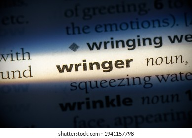 wringer word in a dictionary. wringer concept, definition.
