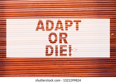 Writing note showing Adapt Or Die. Business photo showcasing Be flexible to changes to continue operating your business Brick Wall art like Graffiti motivational call written on the wall.