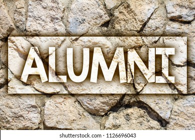 Writing note showing  Alumni. Business photo showcasing Alum Old graduate Postgraduate Gathering College Academy Celebration Ideas message stone stones rock rocks backgrounds wild natural pebbles.