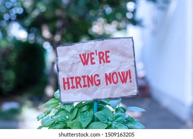 Writing note showing We Re Hiring Now. Business photo showcasing recently employ someone or pay someone to do particular job Plain paper attached to stick and placed in the grassy land.