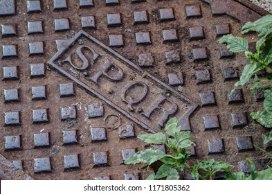 Written SPQR on a cast iron manhole with uncultivated grass under the sun of Rome