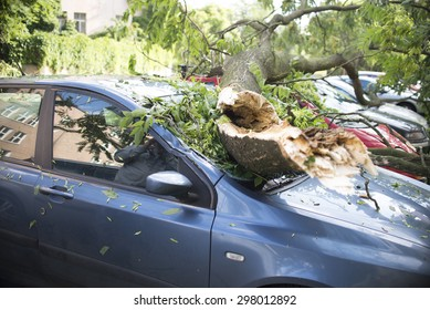 Wroclaw, Poland - July 20: Car trapped under fallen tree after wind storm on July 20, 2015 in Wrolaw, Poland