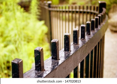 A wrought iron fence - very shallow depth of field.