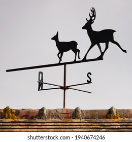 Wrought iron weather vane on a roof in northern France. Weather vane in the shape of animals: a doe in front of and behind it a deer with large antlers on the head. Square format photo