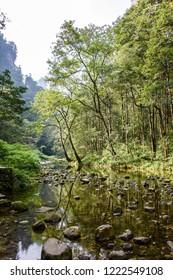 The Wulingyuan Scenic Area, near Zhangjiajie,Hunan, a World Heritage Site of Unesco