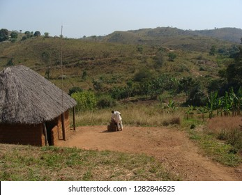 Wum / Cameroon - December 2009: A man standing next to a traditional house in the small village of Weh, close to Wum, in the Northwestern Province of Cameroon.
