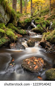 Wyming Brook, Peak District, UK. Autumn woodland scene with flowing river.