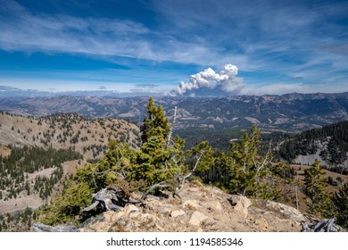 Wyoming mountain wildfire rages in the distance, view from a ridge cliff summit in Wyoming's Bridger Teton National Forest.