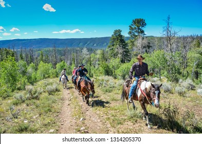 Wyoming / USA - 09-02-2014: Guided horseback riding tour on mountain trail in Medicine Bow National Forest.