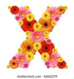 X, flower alphabet isolated on white
