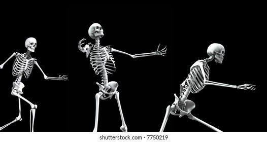 An x ray image of a group of skeletons. A suitable medical or Halloween based image.