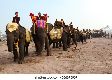 Xayaboury, Laos- FEBRUARY 17, 2017:Mahouts (handlers) a male Asian elephants with a decorated tusks parade to the procession of 68 elephants at the 11th Xayaboury elephant festival.
