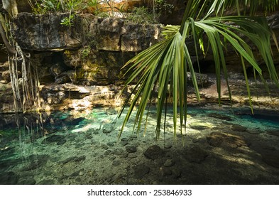 X-Batun Cenote - natural lagoon with transparent turquoise water surrounded by rocks and tropical vegetation