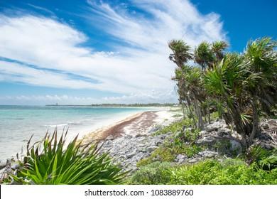 Xcacel beach in Riviera Maya, Mexico. It´s located near Tulum city