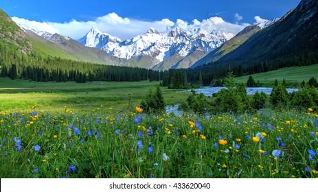 Xiata Valley with Tianshan Range in the Background, Ili, Xinjiang