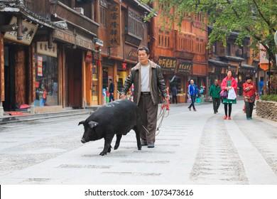 Xijiang, China - March 26, 2018: Chinese man walking a pig in Xijiang Miao Nationality village