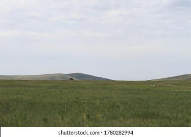 Xilingol Grassland of Inner Mongolia, China
