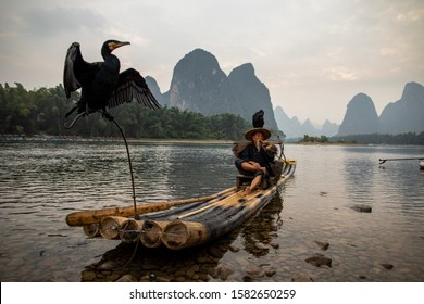 Xingping China November 2019: Cormorant fishing is a traditional fishing method in which fishermen use trained cormorants to fish in rivers