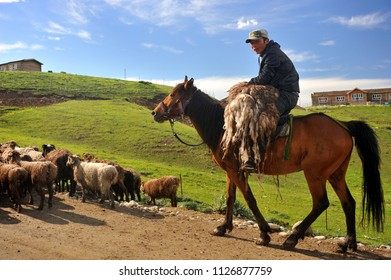 Xinjiang, China - June 10, 2018: a Kazakh herdsman on horseback, carring the sheepskin, and his sheep on the road, Tekes Ccouny, Xinjiang, China.