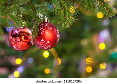 Xmas background - two red balls on fresh fir christmas tree twig indoor