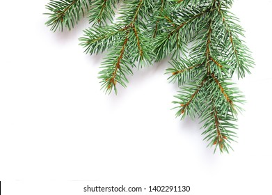 X-mas fir tree branch isolated on white background. Pine branch. Christmas background