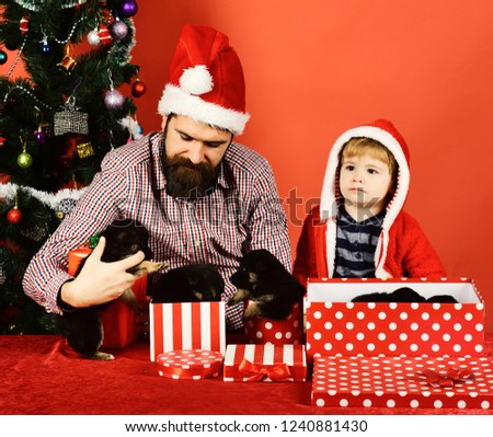 01cbaff48828a Xmas holiday concept. Man and boy in Santa hat and hood play with puppies.
