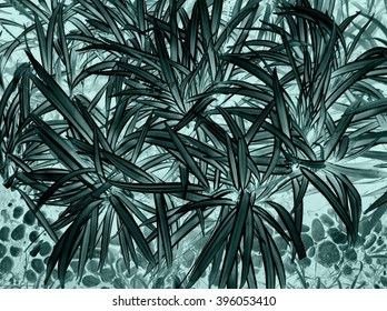 X-ray black and white leaf and foliage abstract