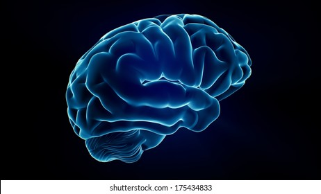 Xray Brain isolated on black background