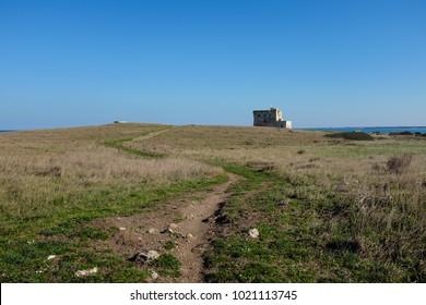 XVI Century antique defensive tower Torre Guaceto along the coast of Apulia. Italy