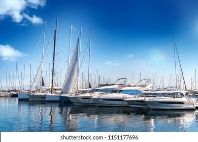 Yacht club and marina long view