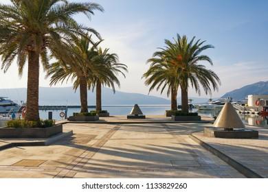 Yacht marina Porto Montenegro. Tivat, Montenegro