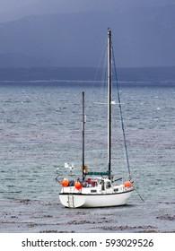 yacht marine Carcass Island, Falkland-Malvinas