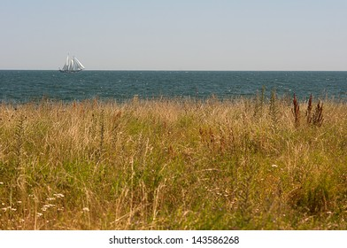 Yacht on the horizon and meadow.