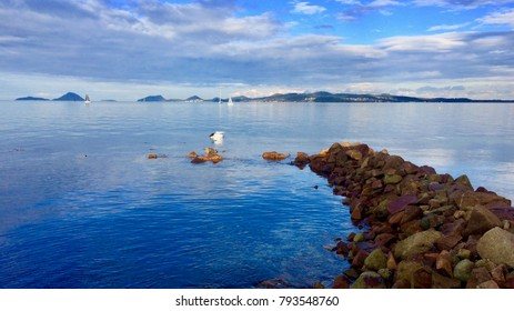 yacht on water with pelican and stone breakwall