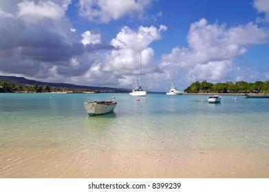 yachts docked at a tropical harbor