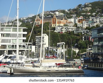 Yachts moored at boat marina near Oriental Bay with hillside houses in background Wellington New Zealand