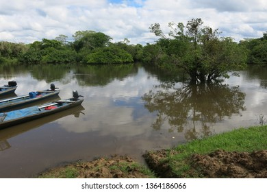 Yacuma river. Bolivian jungle. Amazon region