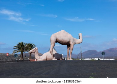 YAIZA, SPAIN - JAN 22, 2017: statue of Camels at a roundabout near Yaiza, Lanzarote, Spain. Camels are used for tourist safaris in Timanfaya national park.